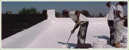 whiteroof.jpg