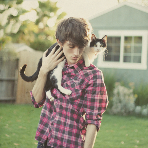 boysandcats1.jpg
