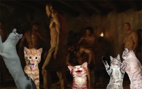 kittensspartans.jpg