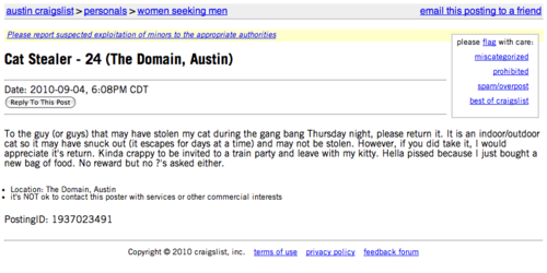 stolencat.png