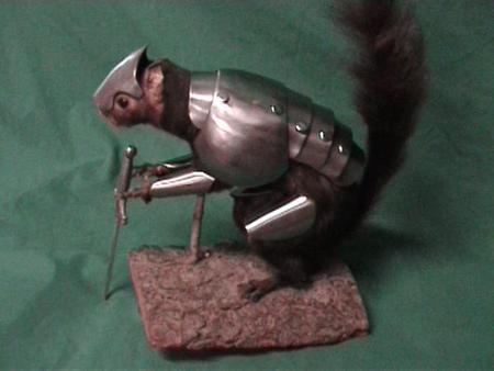 War_Squirrel_elite-600x450.jpg