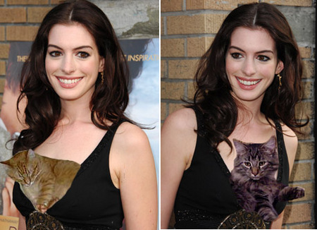 anne-hathaway-cat-boobs.jpg