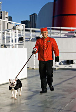 bulldog-cruise.jpg