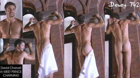 david-charvet-nude.jpg