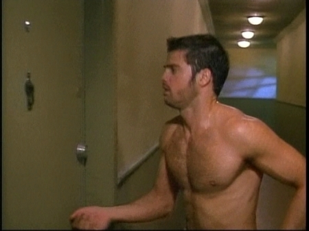 david-charvet-shirtless02.jpg