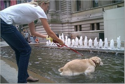 dog-fountain.jpg