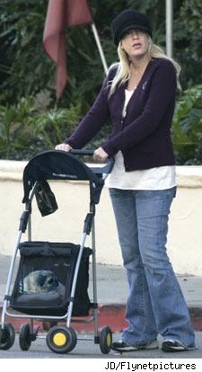 dog-stroller.jpg