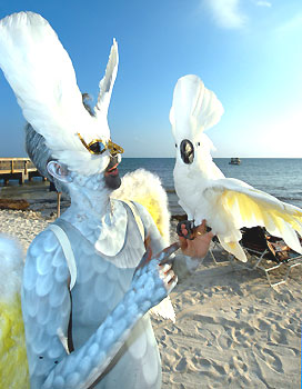 fantasy-birdman.jpg