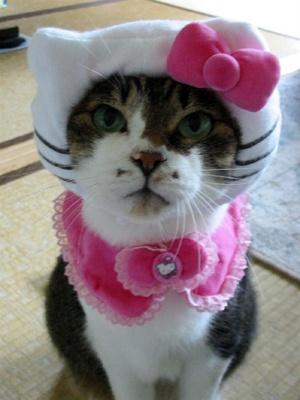 sad-hello-kitty.jpg
