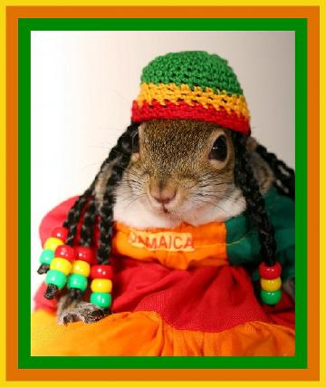 sugarbush-rasta.jpg