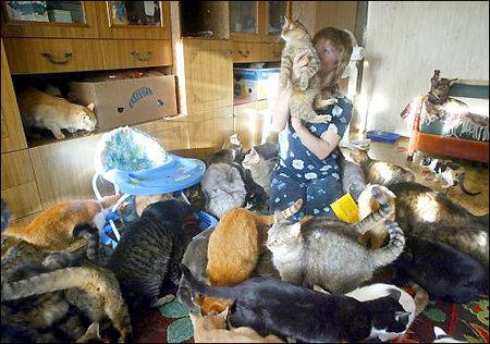 ukraine-cat-lady.jpg