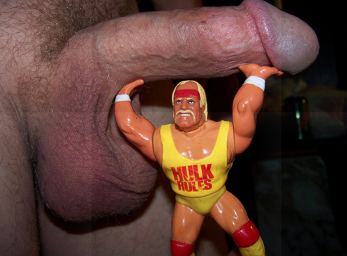 hulk hogan penis