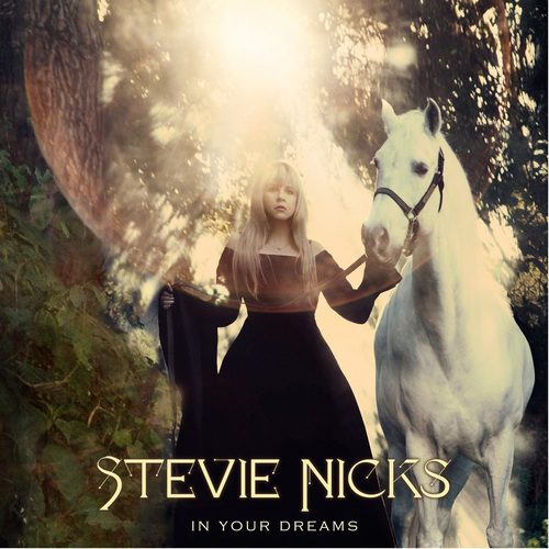 steve nicks IN YOUR DREAMS cover.jpeg