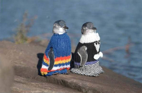 penguin-sweaters-01.jpg