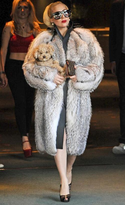 lady-gaga-fur_582x951.jpg