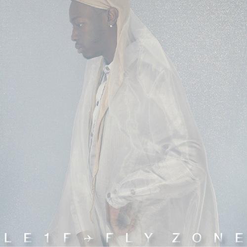 Le1f_FlyZone.jpg