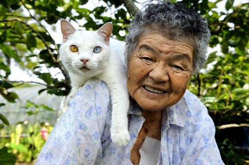grandma-odd-cat-01.jpg