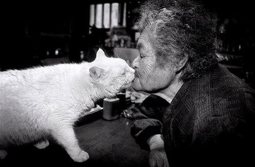 grandma-odd-cat-03.jpg