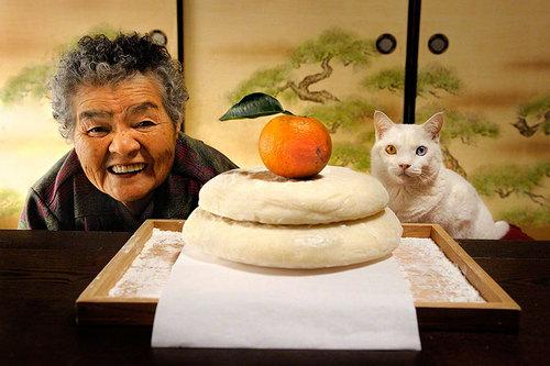 grandma-odd-cat-05.jpg