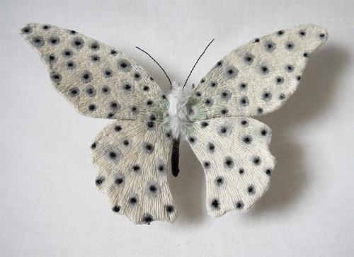 yumi-okita-moths-11.jpg