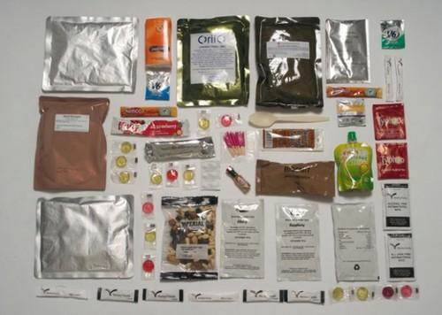 army-food-2-600x428.jpg
