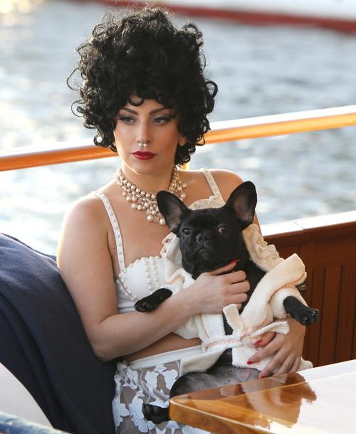FFN_Lady_Gaga_STLA_100114_51546961.jpg