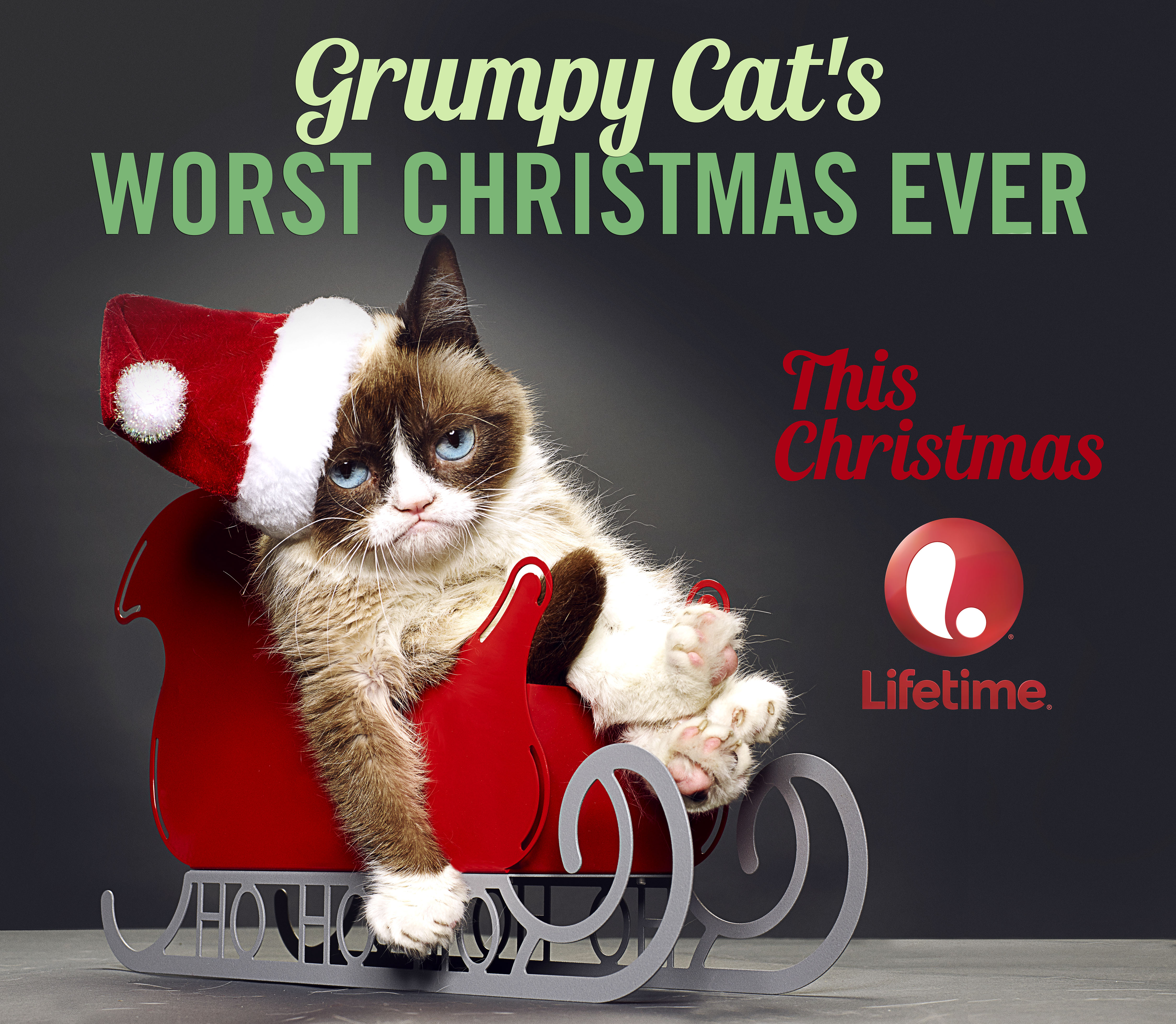 http://www.omgblog.com/media/2014/11/Grumpy-Cat-TV-Movie_Hunl.jpg