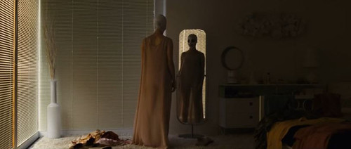 goodnight-mommy-radius-trailer2.JPG