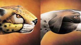 leoparddog.jpg
