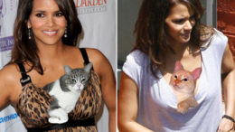 halle-berry-cat-boobs-thumb.jpg
