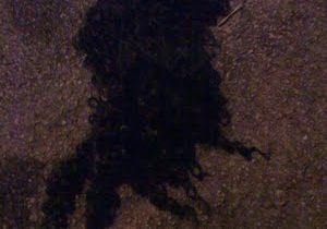 wig-thumb-450x600-94.jpg