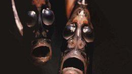 seamonsters-thumb-500x400-1786.jpg