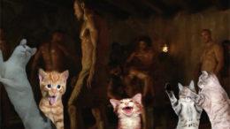 kittensspartans-thumb-500x314-2161.jpg