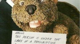 mel-gibson-beaver.jpg