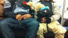 dogs-backpacks-subway-nyc-thumb-500x670-4968.png