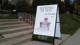 pet-blessings-thumb-500x375-5650.jpg