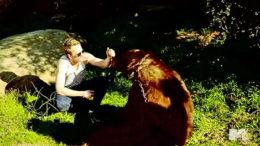 neil-patrick-harris-and-bear.jpg