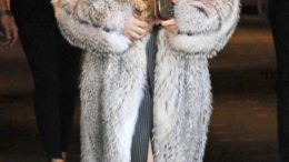 lady-gaga-fur_582x951-thumb-500x817-7788.jpg