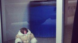 ikea_monkey-thumb-500x500-8857.jpg