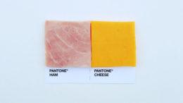 hamcheese-thumb-500x500-10083.jpg