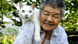 grandma-odd-cat-01-thumb-500x333-15258.jpg