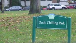dude_chilling-thumb-500x333-17178.jpg