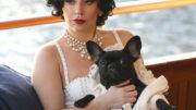 FFN_Lady_Gaga_STLA_100114_51546961-thumb-500x610-21312.jpg