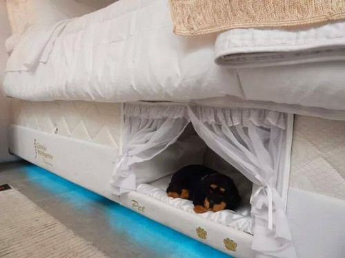 pet-bed-inside-mattress-colchao-inteligente-postural-11