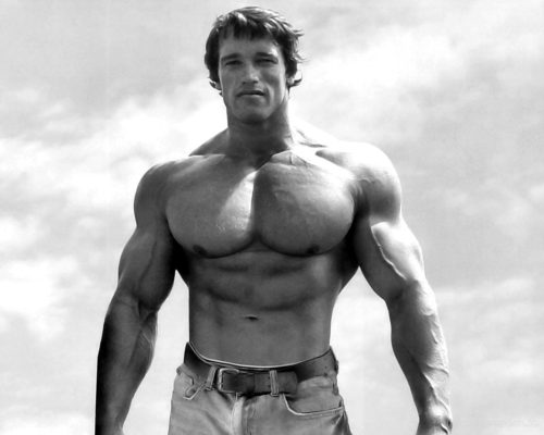 arnold-schwarzenegger-body-bulding-photos-8