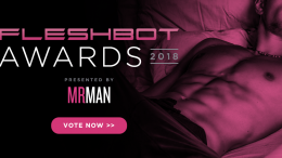 Fleshbot Awards 2018