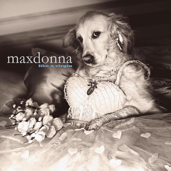 madonna4.jpg